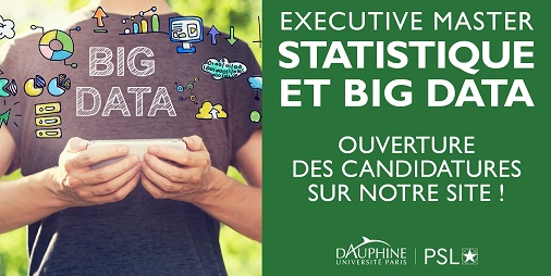 Executive Master Statistiques et Big Data - Université Paris Dauphine